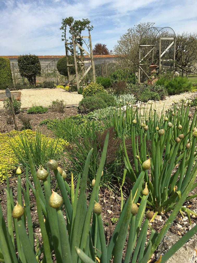 GardenersBlog